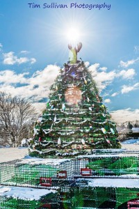 Rockland Main Street Inc. sponsors the lobster trap Christmas tree, and holiday Parade of Lights.