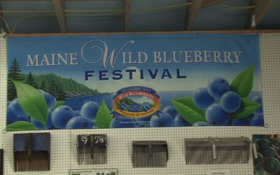 Wild Blueberry Day at the Union Fair – Free pies, Judging Blueberry Desserts & Whoopie Pies, Kids pie eating