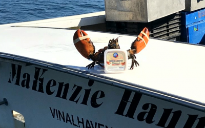 CWS 2019-04-19 A New Twist on Lobster, From Vinalhaven, Maine. Watch Now!