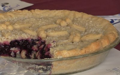 Union Fair 2019 Highlights – Judging of the Blueberry Pies and Blueberry Desserts