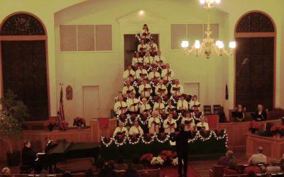 The Living Christmas Tree 2019