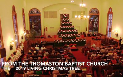 """""""Going Places"""" replay : The Living ChristmasTree –  Christmas 2019"""